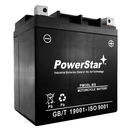 YTX30L-BS Power Sports Battery Replaces ETX30L CYIX30L-BS YGIX30 M7230L
