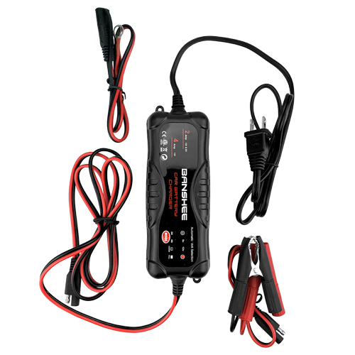 Sealed Lead Acid Battery Charger 4