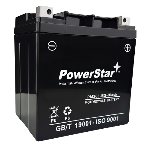 Replacement YTX30L-BS Motorsport 385CCA 12V 30AH Battery